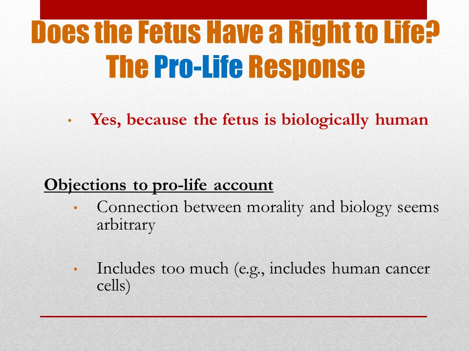 Does the Fetus Have a Right to Life.