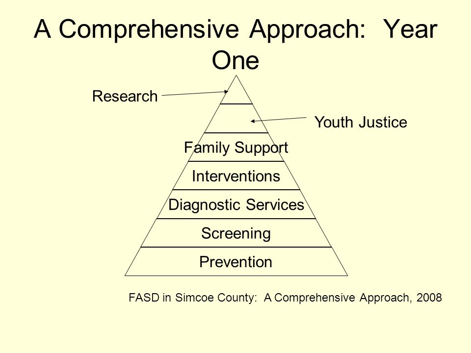 A Comprehensive Approach: Year One Family Support Interventions Diagnostic Services Screening Prevention Youth Justice Research FASD in Simcoe County: A Comprehensive Approach, 2008