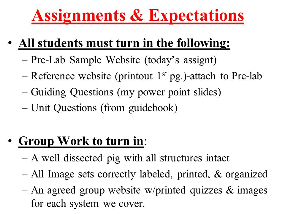 Assignments & Expectations All students must turn in the following: –Pre-Lab Sample Website (today's assignt) –Reference website (printout 1 st pg.)-a