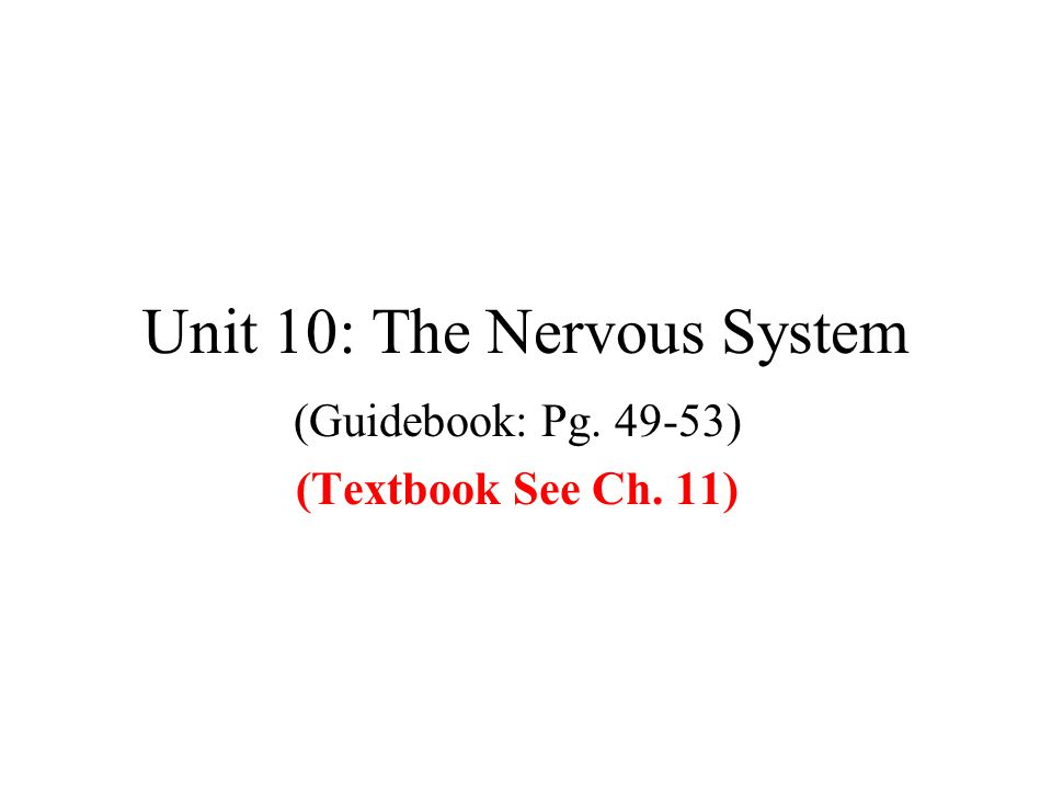 Unit 10: The Nervous System (Guidebook: Pg. 49-53) (Textbook See Ch. 11)