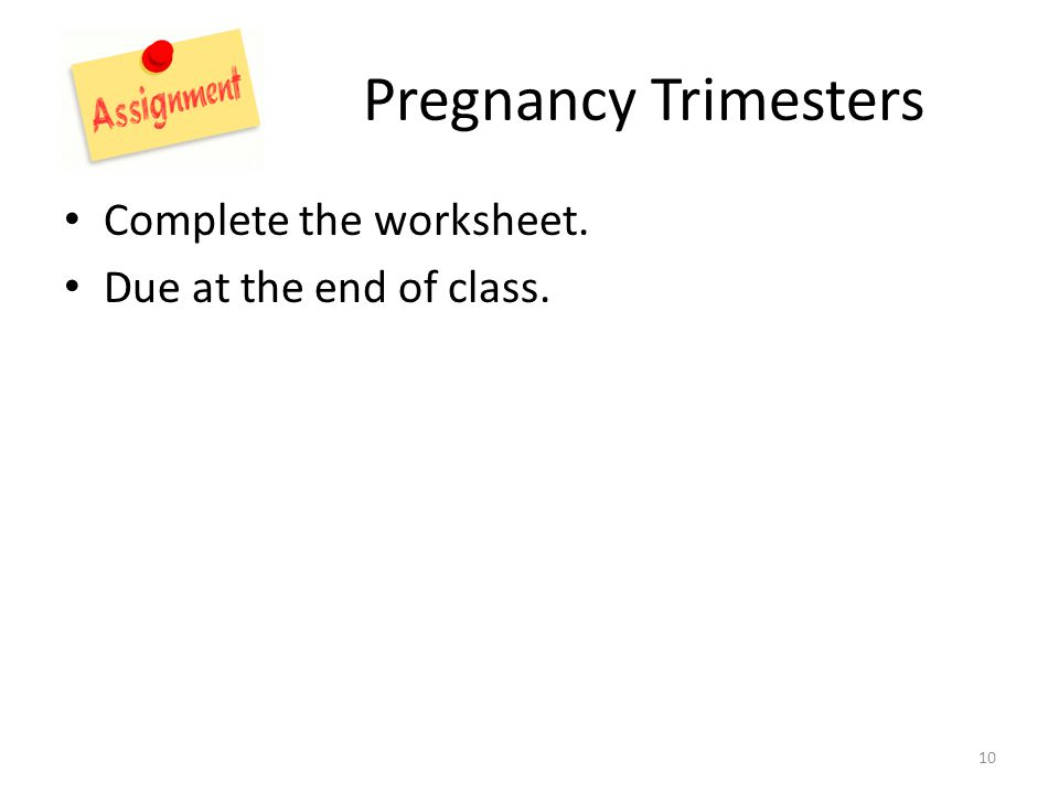 Pregnancy Trimesters Complete the worksheet. Due at the end of class. 10