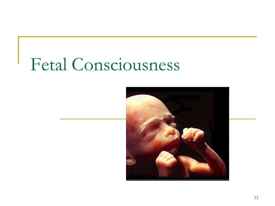 35 Fetal Consciousness
