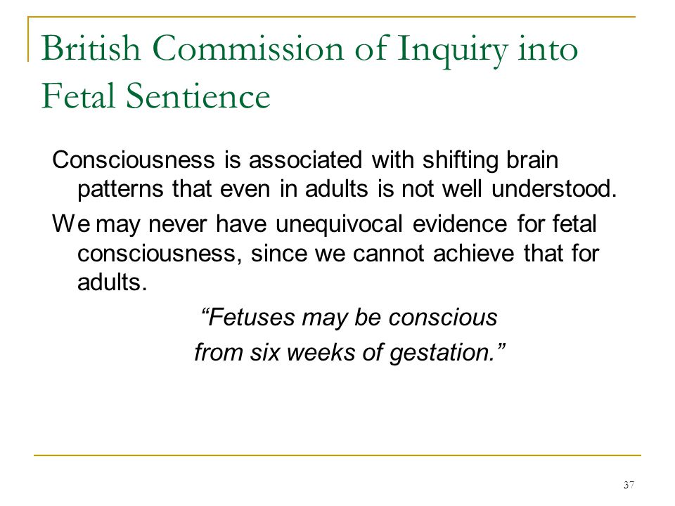 37 British Commission of Inquiry into Fetal Sentience Consciousness is associated with shifting brain patterns that even in adults is not well understood.