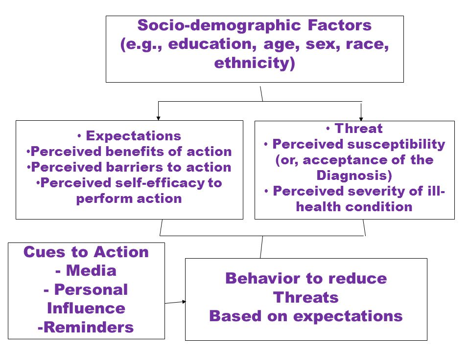 Socio-demographic Factors (e.g., education, age, sex, race, ethnicity) Expectations Perceived benefits of action Perceived barriers to action Perceive