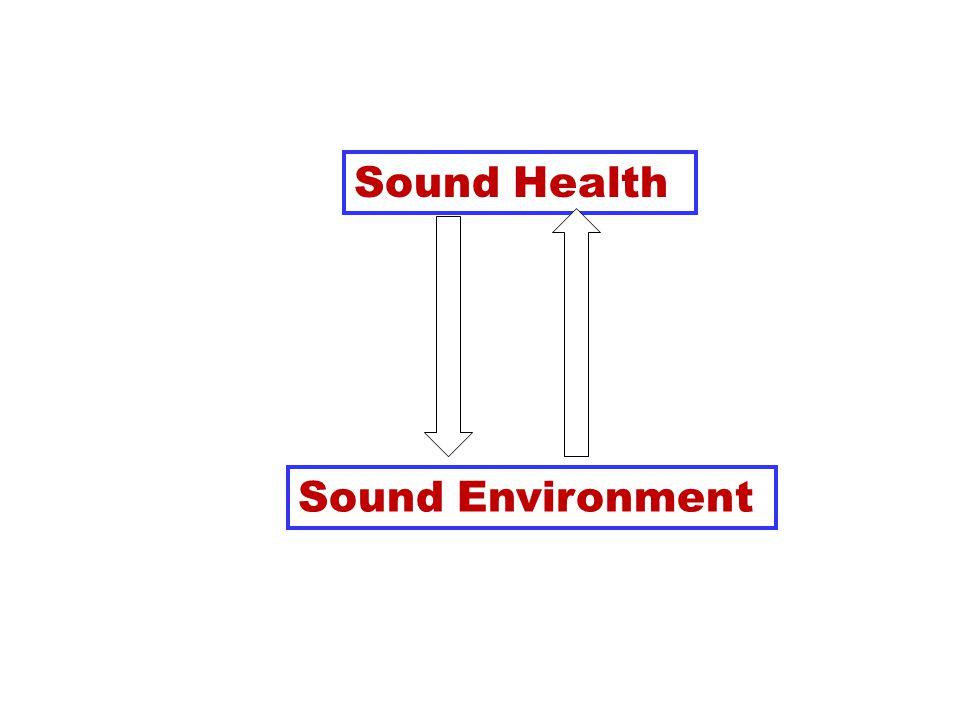 Sound Health Sound Environment