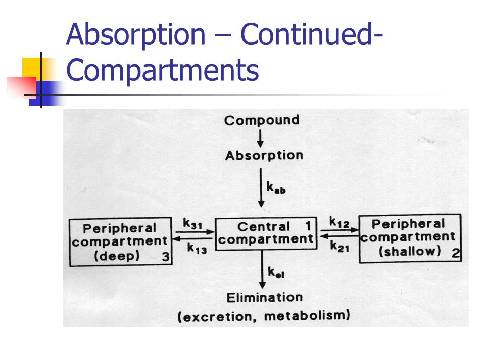 Absorption – Continued- Compartments