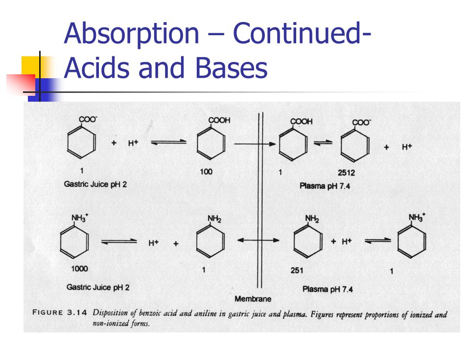 Absorption – Continued- Acids and Bases