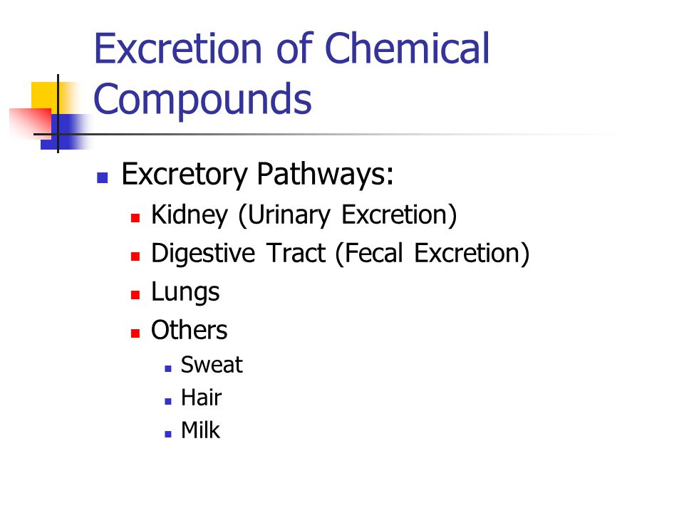 Excretion of Chemical Compounds Excretory Pathways: Kidney (Urinary Excretion) Digestive Tract (Fecal Excretion) Lungs Others Sweat Hair Milk