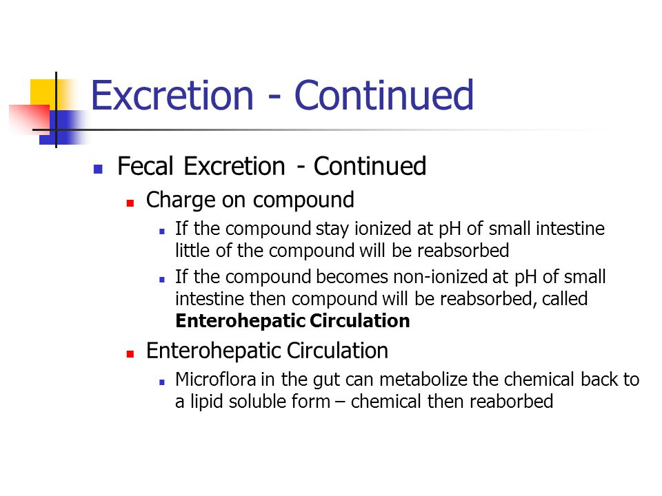 Fecal Excretion - Continued Charge on compound If the compound stay ionized at pH of small intestine little of the compound will be reabsorbed If the compound becomes non-ionized at pH of small intestine then compound will be reabsorbed, called Enterohepatic Circulation Enterohepatic Circulation Microflora in the gut can metabolize the chemical back to a lipid soluble form – chemical then reaborbed