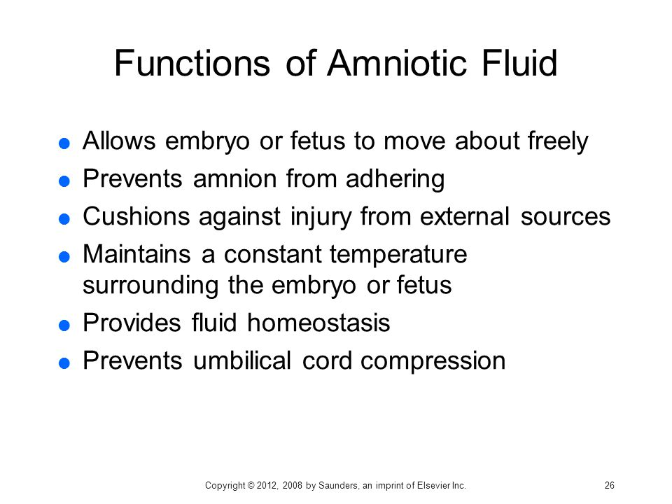 Functions of Amniotic Fluid  Allows embryo or fetus to move about freely  Prevents amnion from adhering  Cushions against injury from external sour