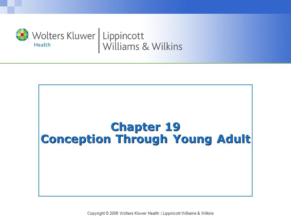 Copyright © 2008 Wolters Kluwer Health | Lippincott Williams & Wilkins Chapter 19 Conception Through Young Adult