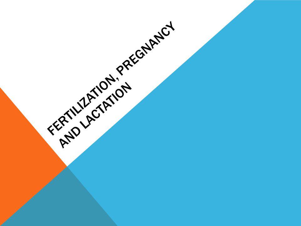 FERTILIZATION, PREGNANCY AND LACTATION