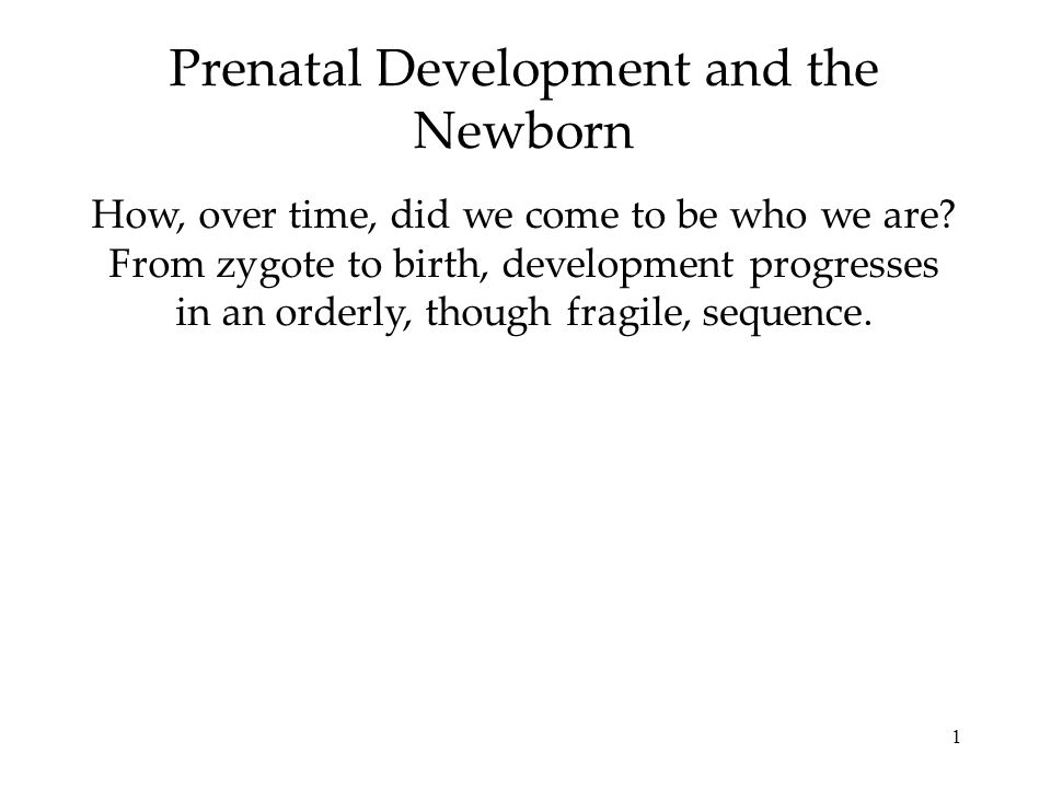 1 Prenatal Development and the Newborn How, over time, did we come to be who we are? From zygote to birth, development progresses in an orderly, thoug