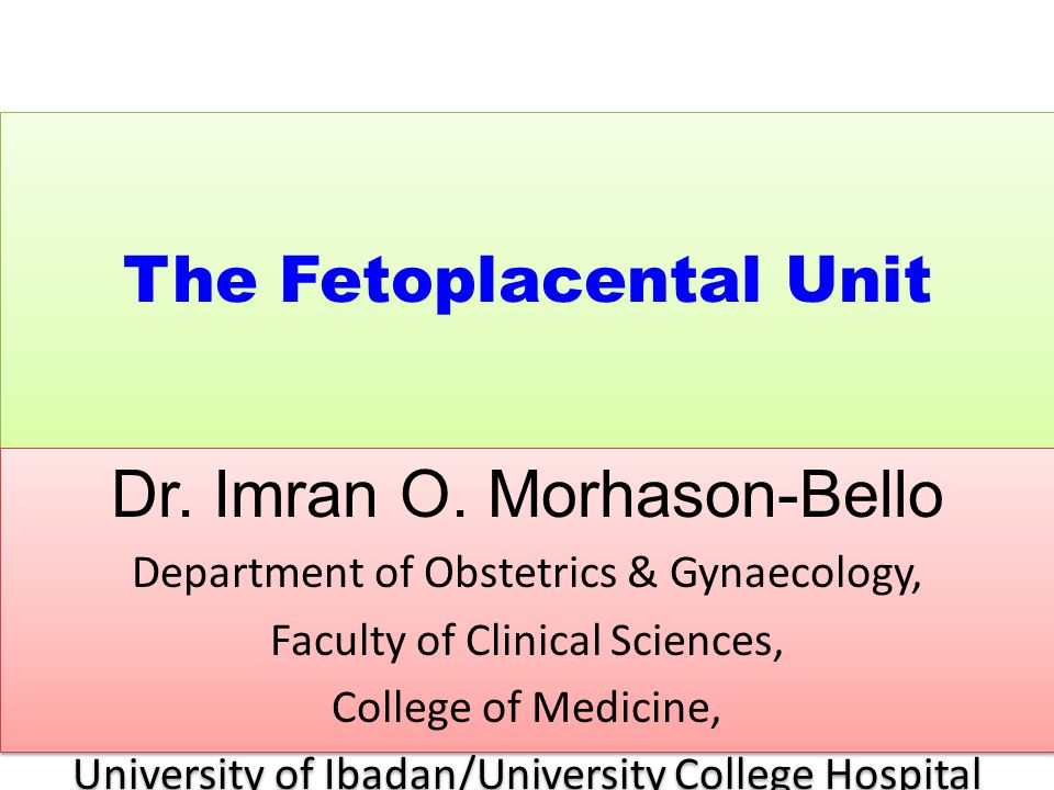 The Fetoplacental Unit Dr. Imran O. Morhason-Bello Department of Obstetrics & Gynaecology, Faculty of Clinical Sciences, College of Medicine, Universi