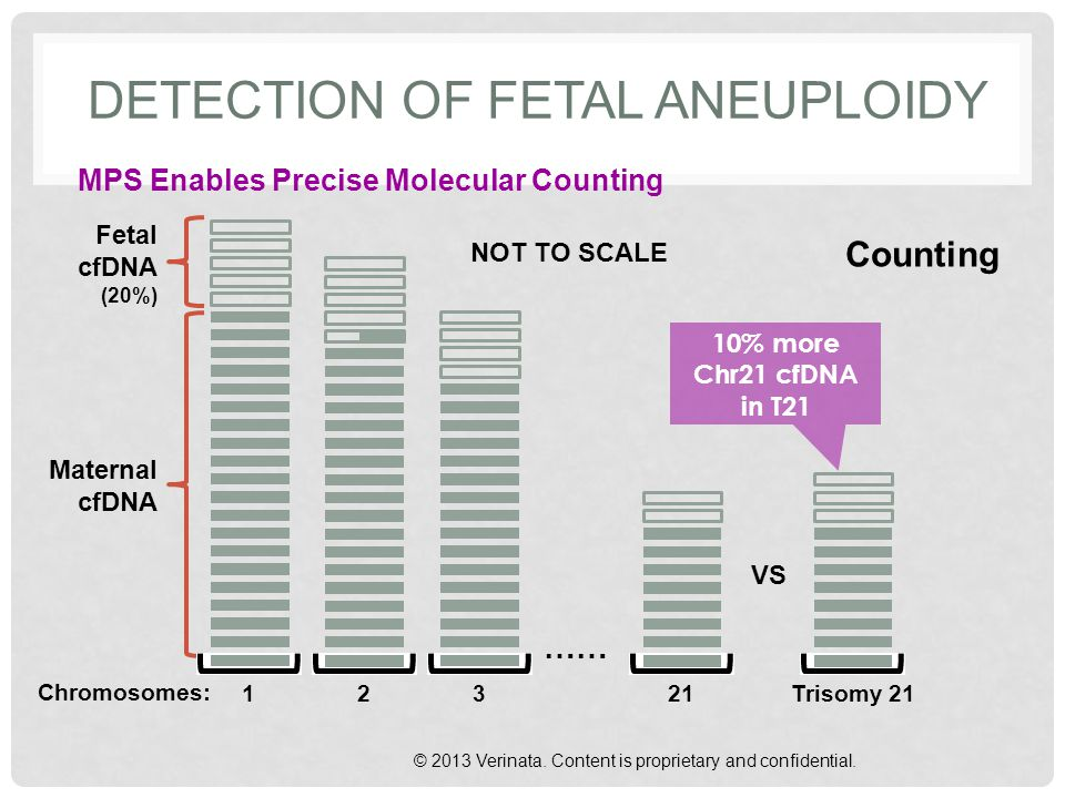DETECTION OF FETAL ANEUPLOIDY MPS Enables Precise Molecular Counting © 2013 Verinata. Content is proprietary and confidential. Fetal cfDNA (20%) Mater