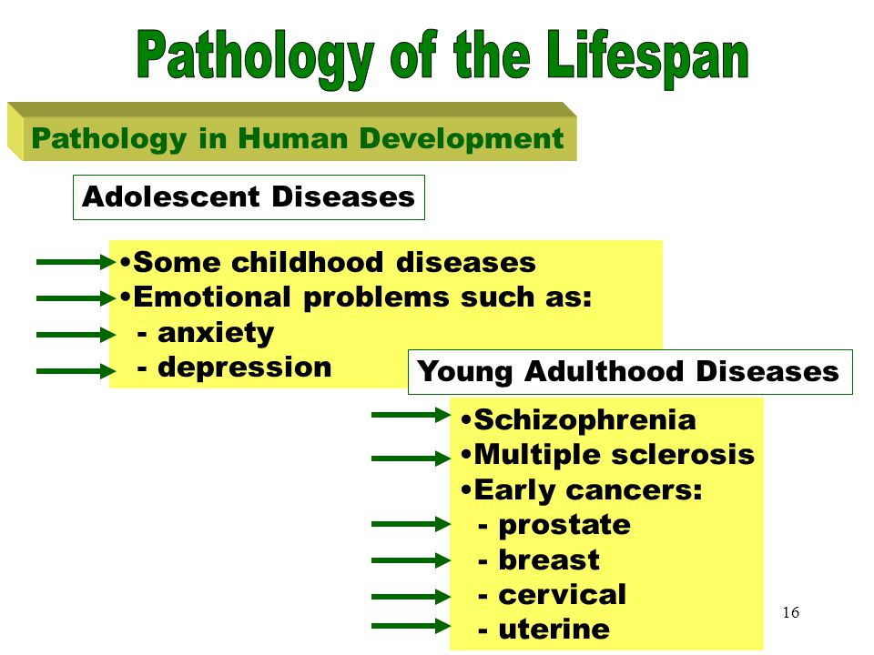 15 Toddler Diseases Pathology in Human Development Otitis media Strep throat Roseola Allergies Diarrhea Toddler Diseases Strep throat Otitis media If