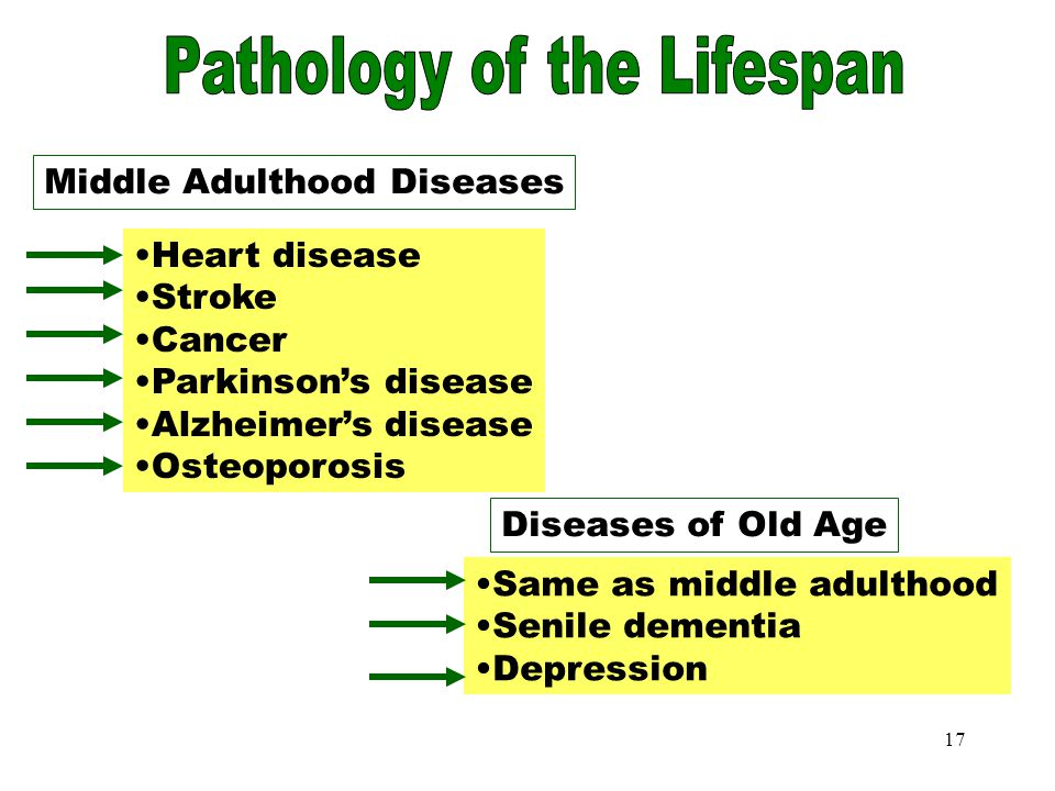 16 Adolescent Diseases Pathology in Human Development Some childhood diseases Emotional problems such as: - anxiety - depression Adolescent Diseases S