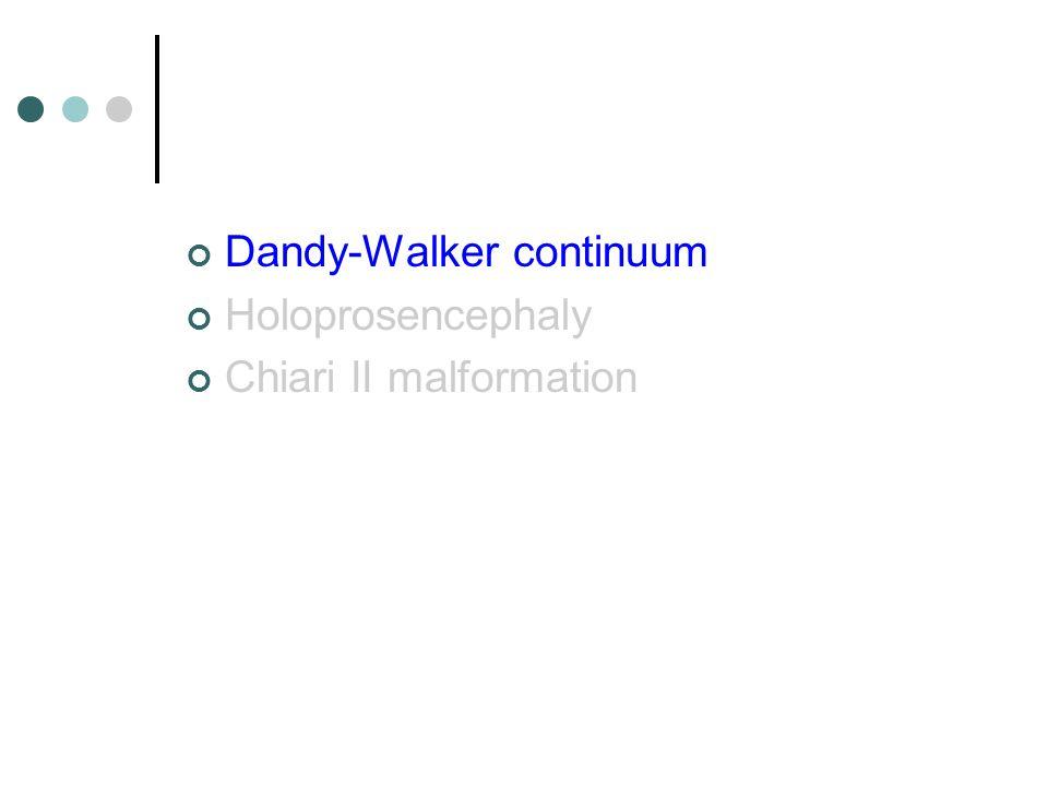 Dandy-Walker continuum Holoprosencephaly Chiari II malformation