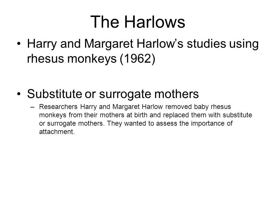 The Harlows Harry and Margaret Harlow's studies using rhesus monkeys (1962) Substitute or surrogate mothers –Researchers Harry and Margaret Harlow rem