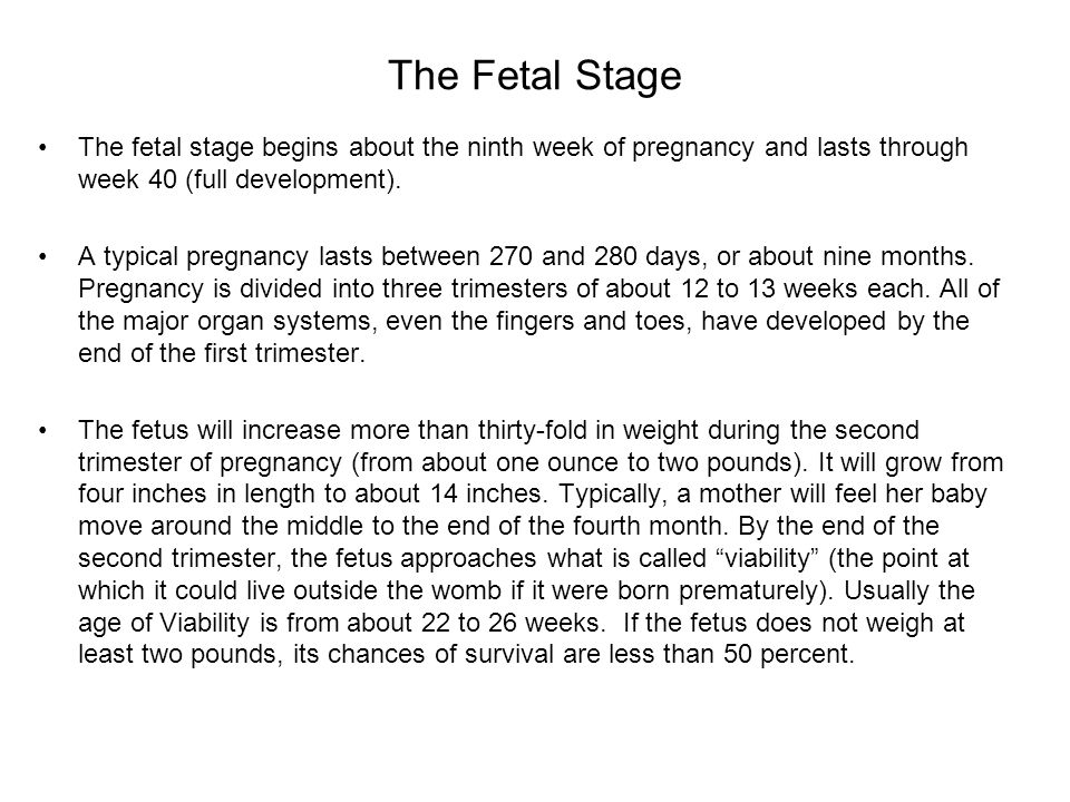 The Fetal Stage The fetal stage begins about the ninth week of pregnancy and lasts through week 40 (full development). A typical pregnancy lasts betwe
