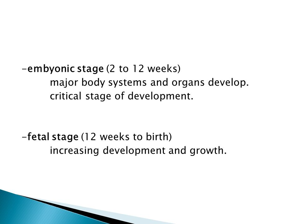 -embyonic stage (2 to 12 weeks) major body systems and organs develop. critical stage of development. -fetal stage (12 weeks to birth) increasing deve