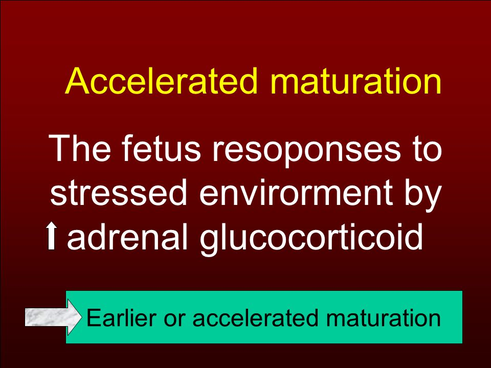 Accelerated maturation The fetus resoponses to stressed envirorment by adrenal glucocorticoid Earlier or accelerated maturation