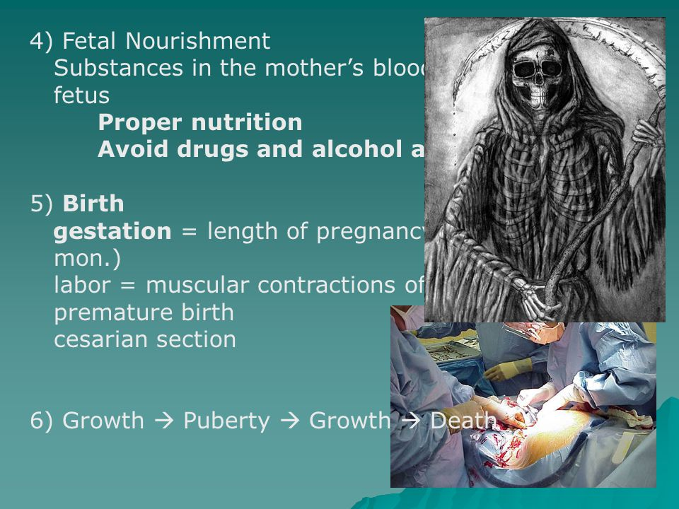 4) Fetal Nourishment Substances in the mother's blood pass to the fetus Proper nutrition Avoid drugs and alcohol and Viruses 5) Birth gestation = leng