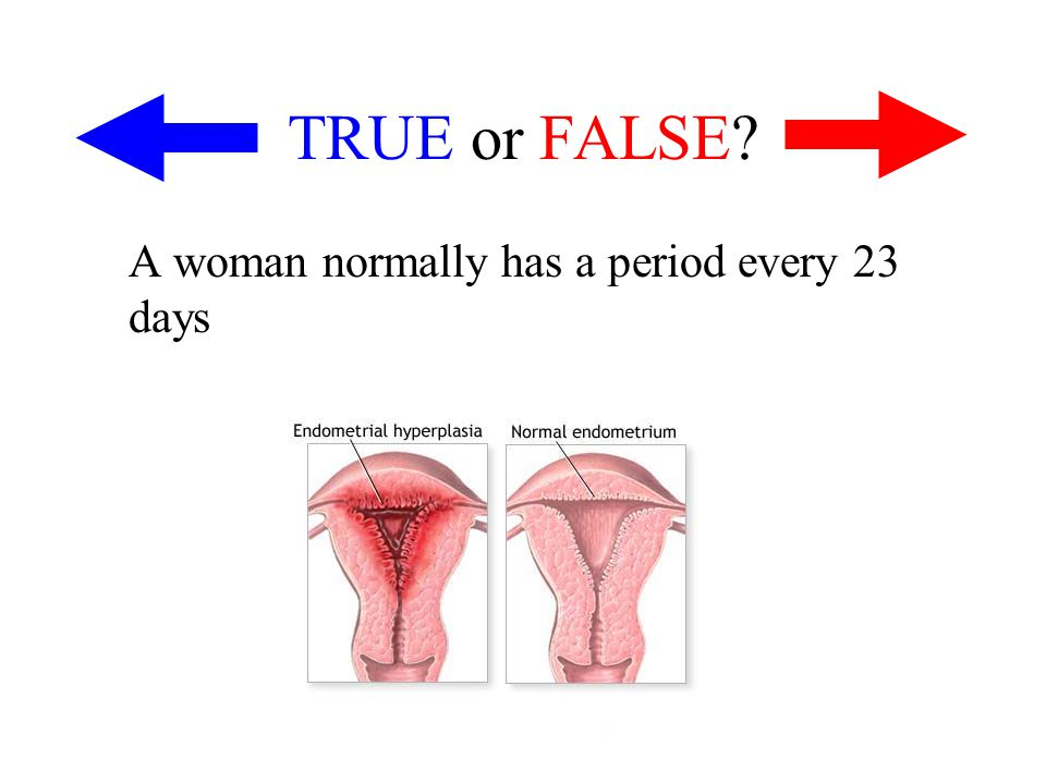 TRUE or FALSE? A woman normally has a period every 23 days