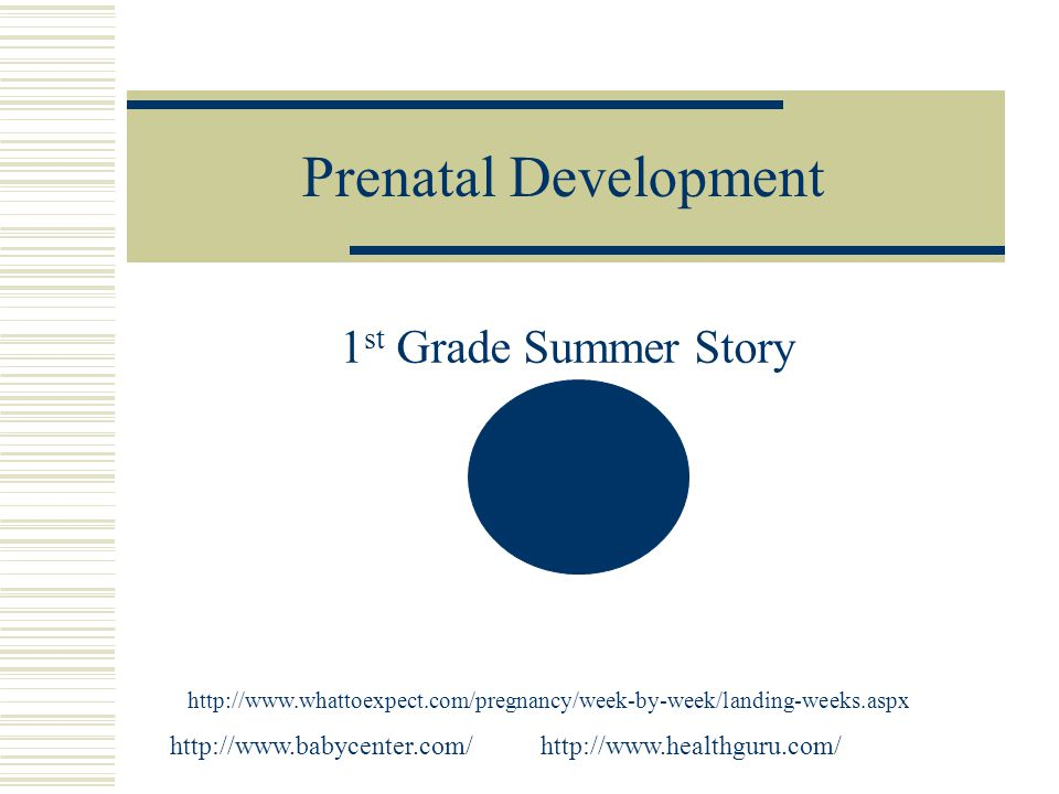 Prenatal Development 1 st Grade Summer Story http://www.whattoexpect.com/pregnancy/week-by-week/landing-weeks.aspx http://www.healthguru.com/http://www.babycenter.com/