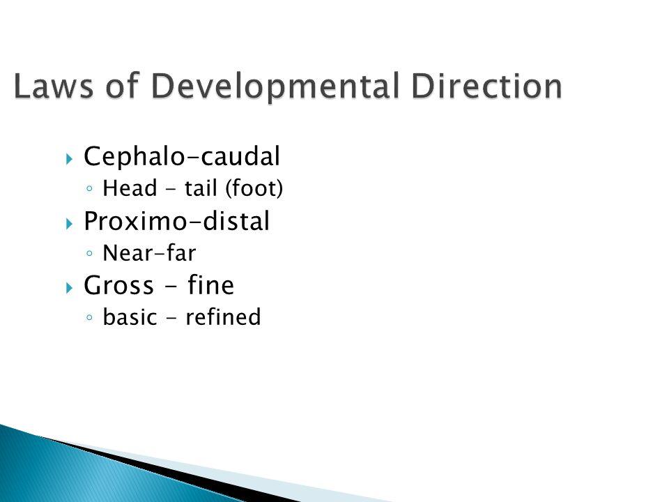 Cephalo-caudal ◦ Head - tail (foot)  Proximo-distal ◦ Near-far  Gross - fine ◦ basic - refined