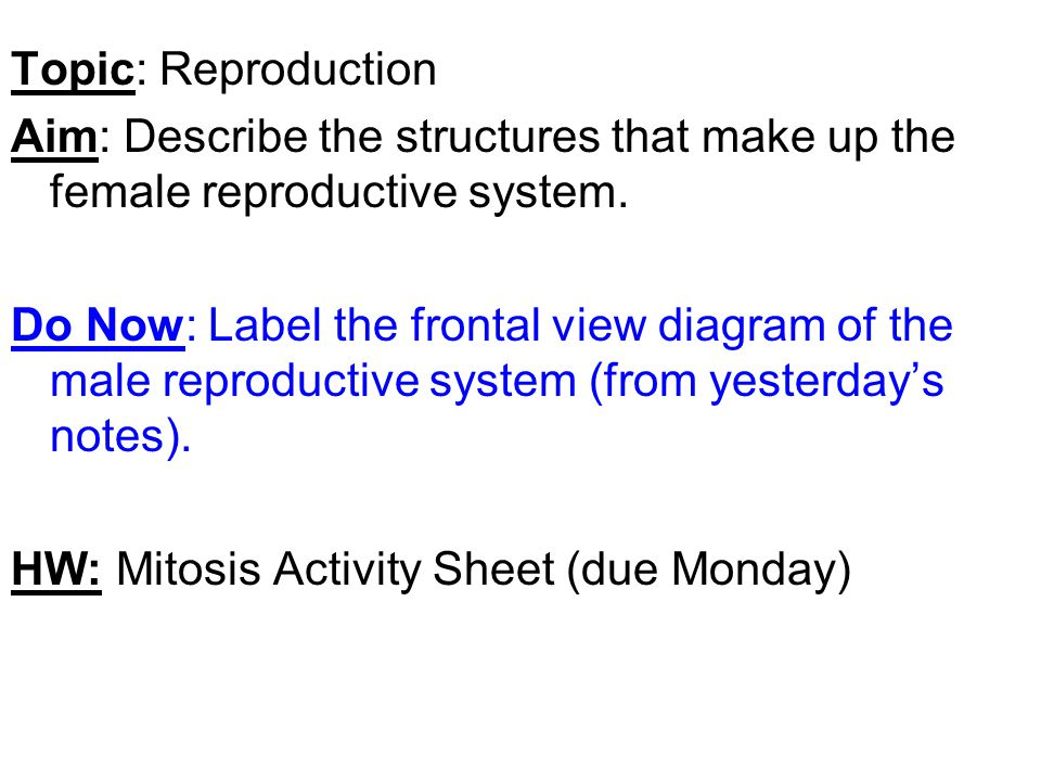 Topic: Reproduction Aim: Describe the structures that make up the female reproductive system. Do Now: Label the frontal view diagram of the male repro