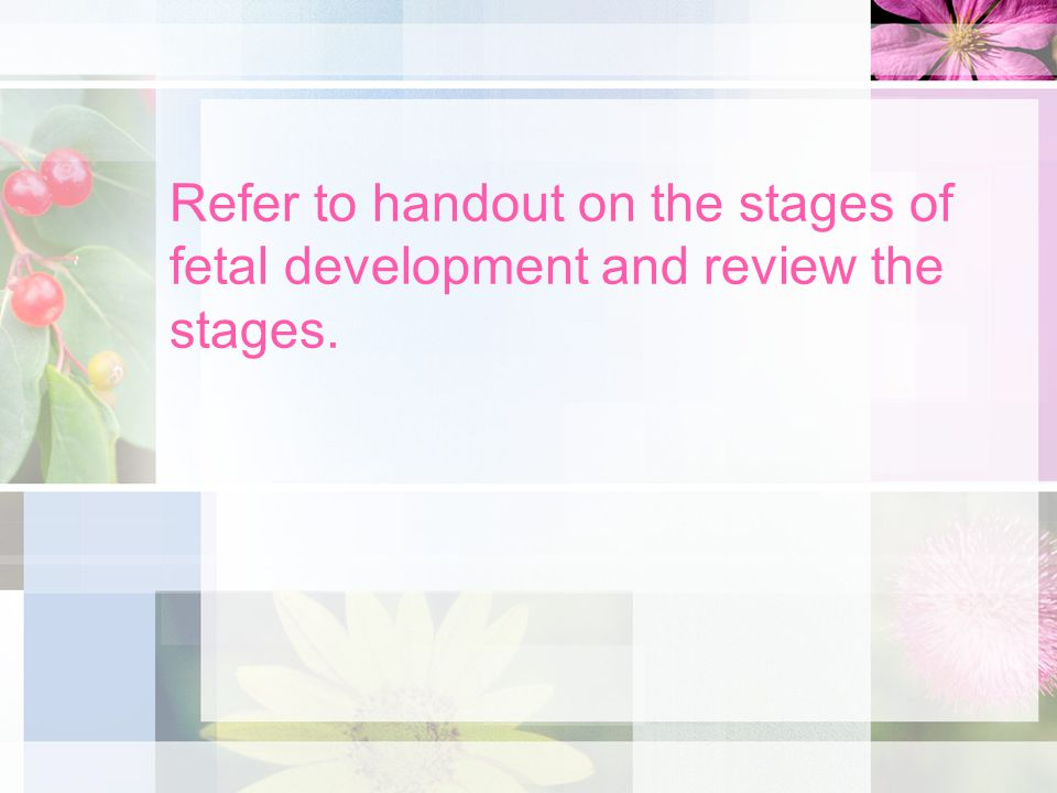 Refer to handout on the stages of fetal development and review the stages.