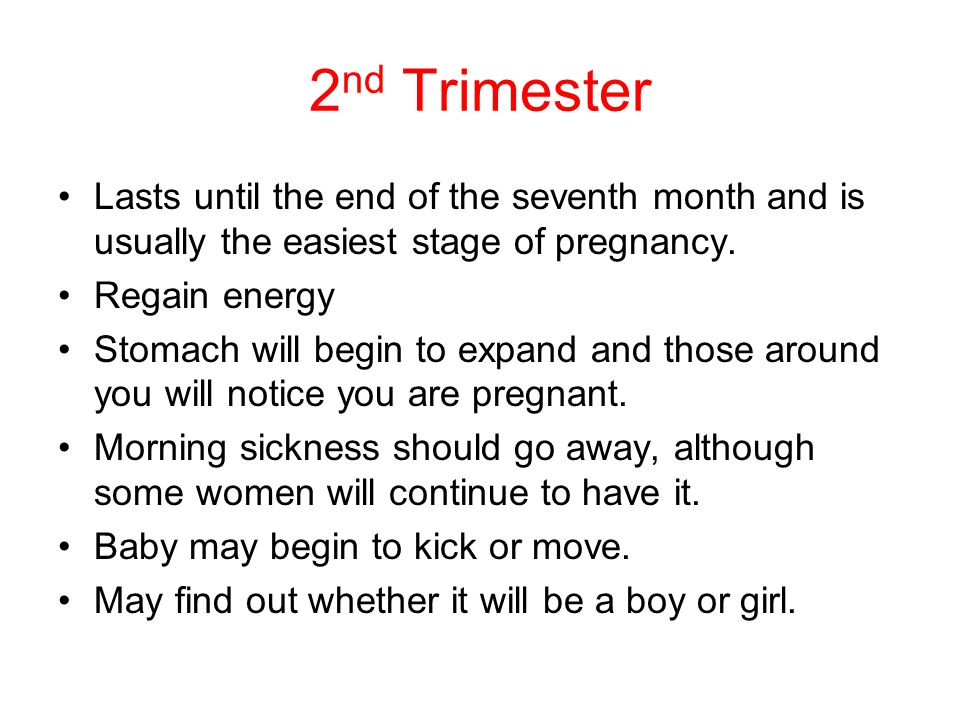 2 nd Trimester Lasts until the end of the seventh month and is usually the easiest stage of pregnancy.