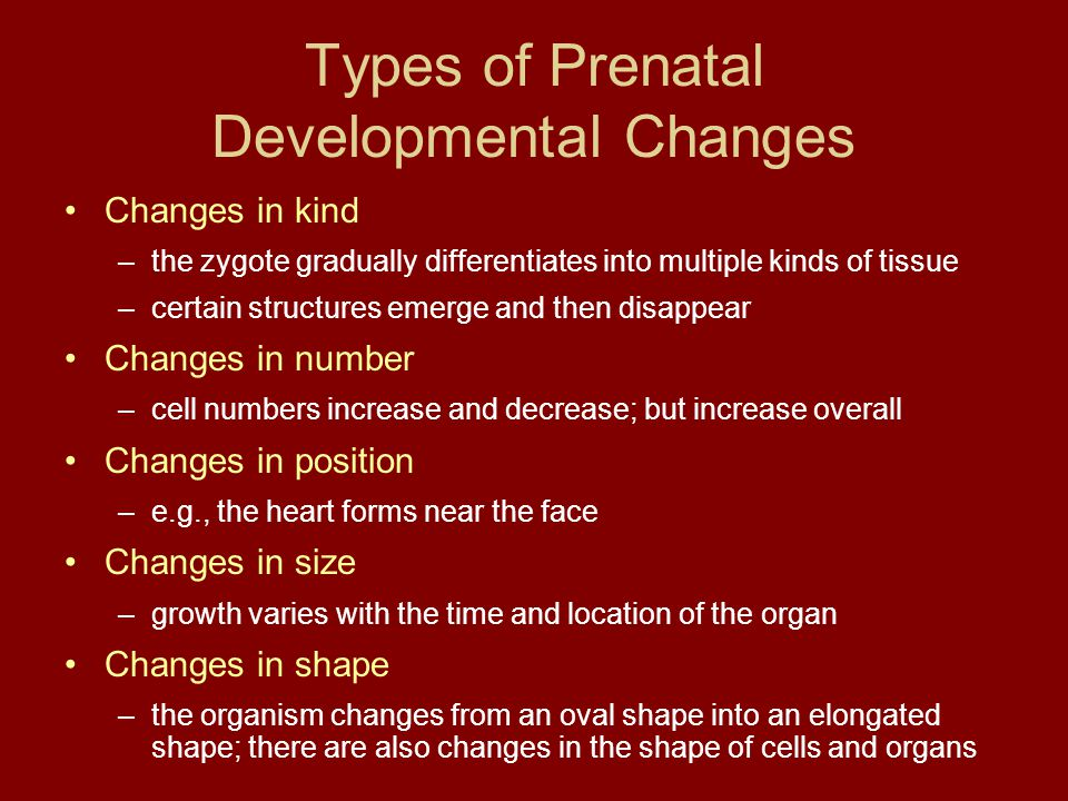 Types of Prenatal Developmental Changes Changes in kind –the zygote gradually differentiates into multiple kinds of tissue –certain structures emerge