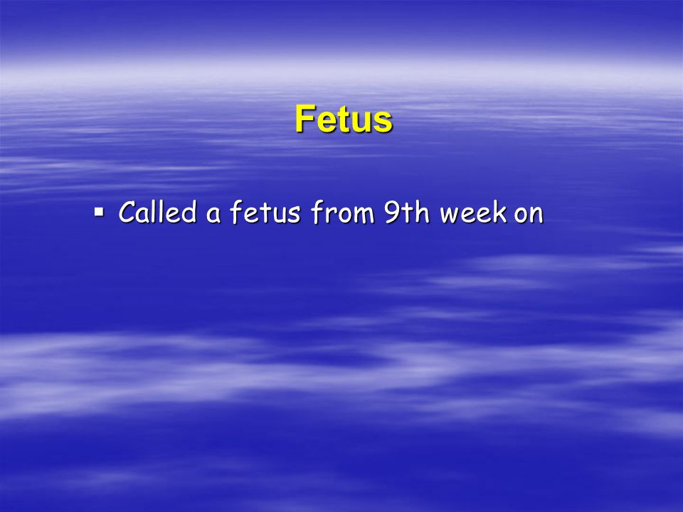 Fetus  Called a fetus from 9th week on