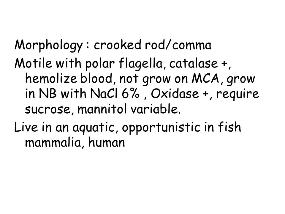 Morphology : crooked rod/comma Motile with polar flagella, catalase +, hemolize blood, not grow on MCA, grow in NB with NaCl 6%, Oxidase +, require sucrose, mannitol variable.