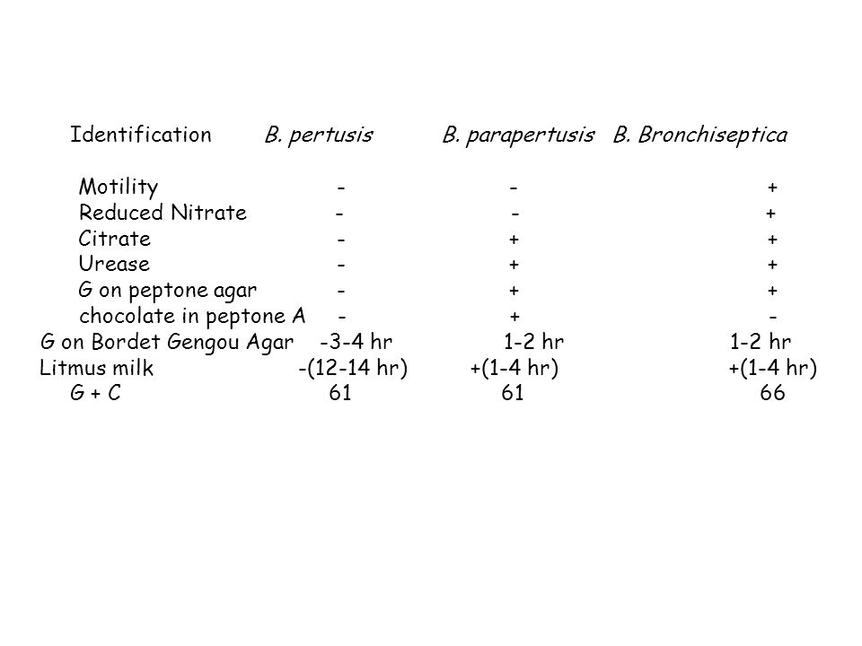 Identification B. pertusis B. parapertusis B. Bronchiseptica Motility--+ Reduced Nitrate - - + Citrate-++ Urease-++ G on peptone agar-++ chocolate in