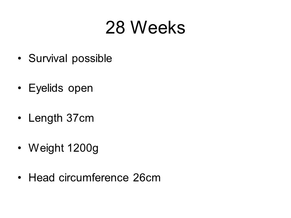 28 Weeks Survival possible Eyelids open Length 37cm Weight 1200g Head circumference 26cm