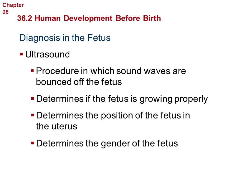 Human Reproduction and Development Diagnosis in the Fetus  Ultrasound  Procedure in which sound waves are bounced off the fetus  Determines if the