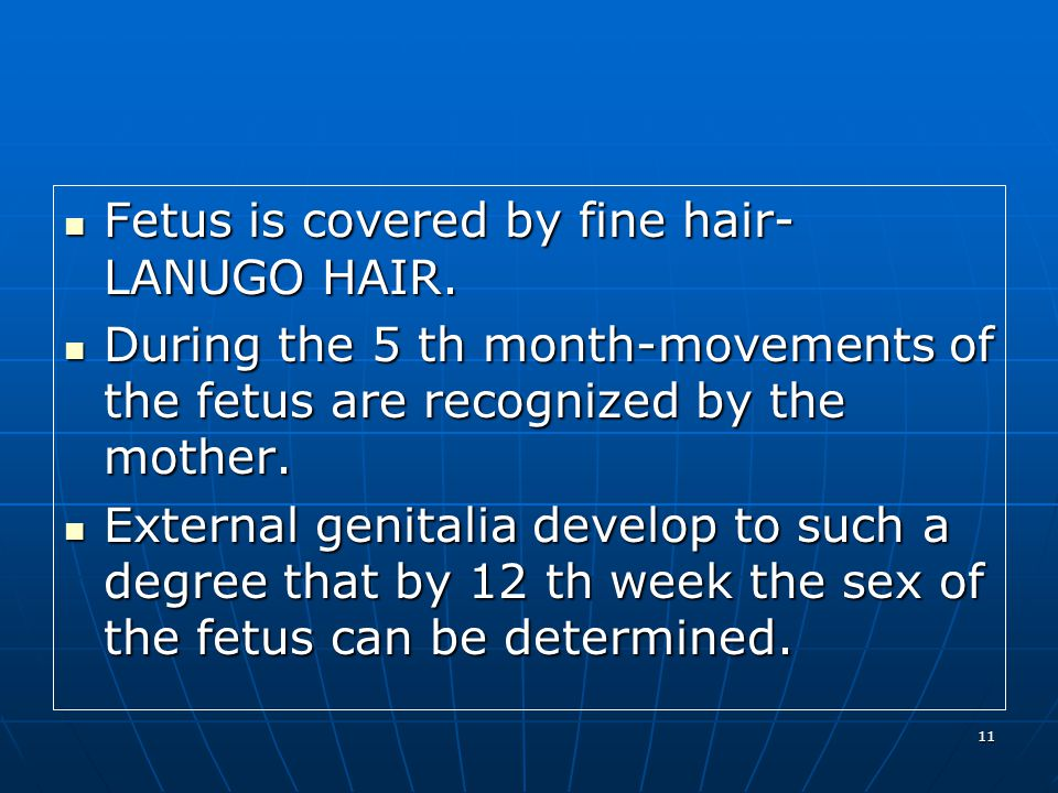 11 Fetus is covered by fine hair- LANUGO HAIR. Fetus is covered by fine hair- LANUGO HAIR. During the 5 th month-movements of the fetus are recognized