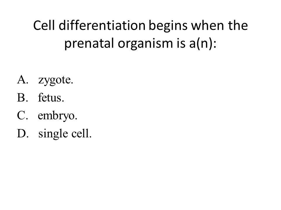 Cell differentiation begins when the prenatal organism is a(n): A.