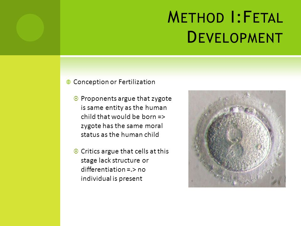 M ETHOD I:F ETAL D EVELOPMENT  Conception or Fertilization  Proponents argue that zygote is same entity as the human child that would be born => zygote has the same moral status as the human child  Critics argue that cells at this stage lack structure or differentiation =.> no individual is present