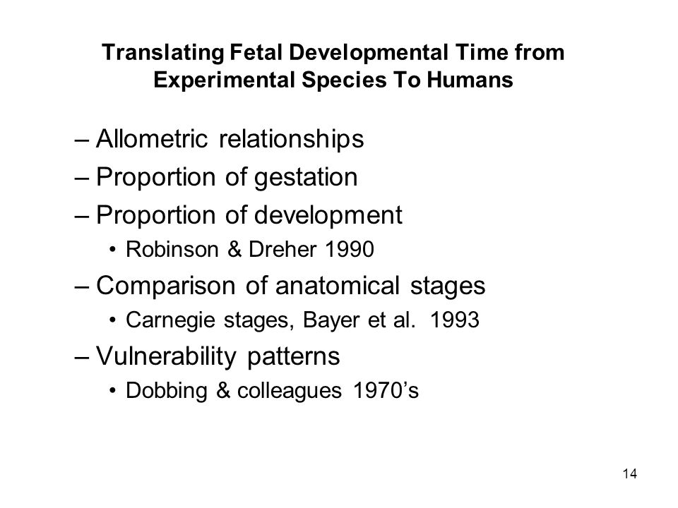 14 Translating Fetal Developmental Time from Experimental Species To Humans –Allometric relationships –Proportion of gestation –Proportion of developm