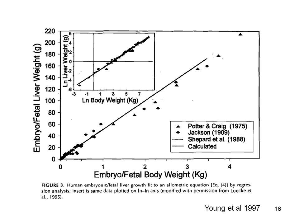16 Young et al 1997