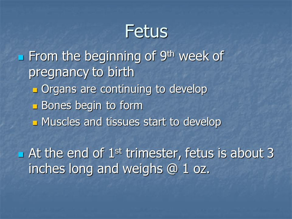 Fetus From the beginning of 9 th week of pregnancy to birth From the beginning of 9 th week of pregnancy to birth Organs are continuing to develop Org