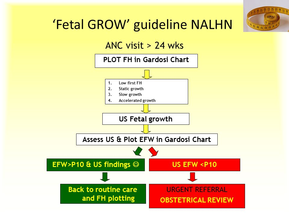 'Fetal GROW' guideline NALHN ANC visit > 24 wks PLOT FH in Gardosi Chart 1.Low first FH 2.Static growth 3.Slow growth 4.Accelerated growth US Fetal gr