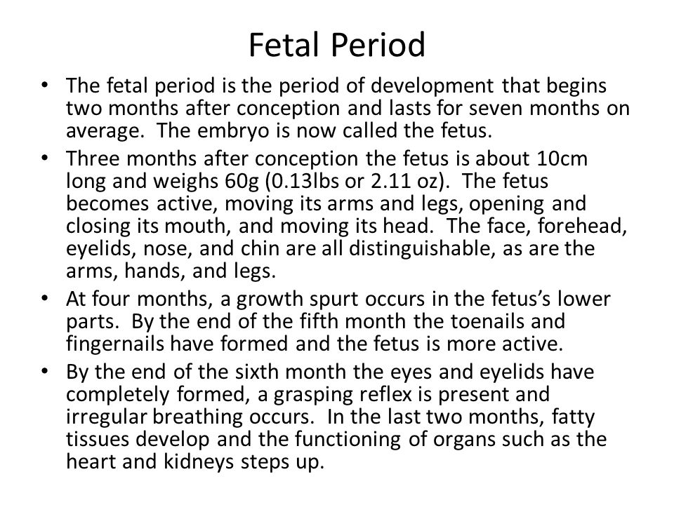 Fetal Period The fetal period is the period of development that begins two months after conception and lasts for seven months on average.