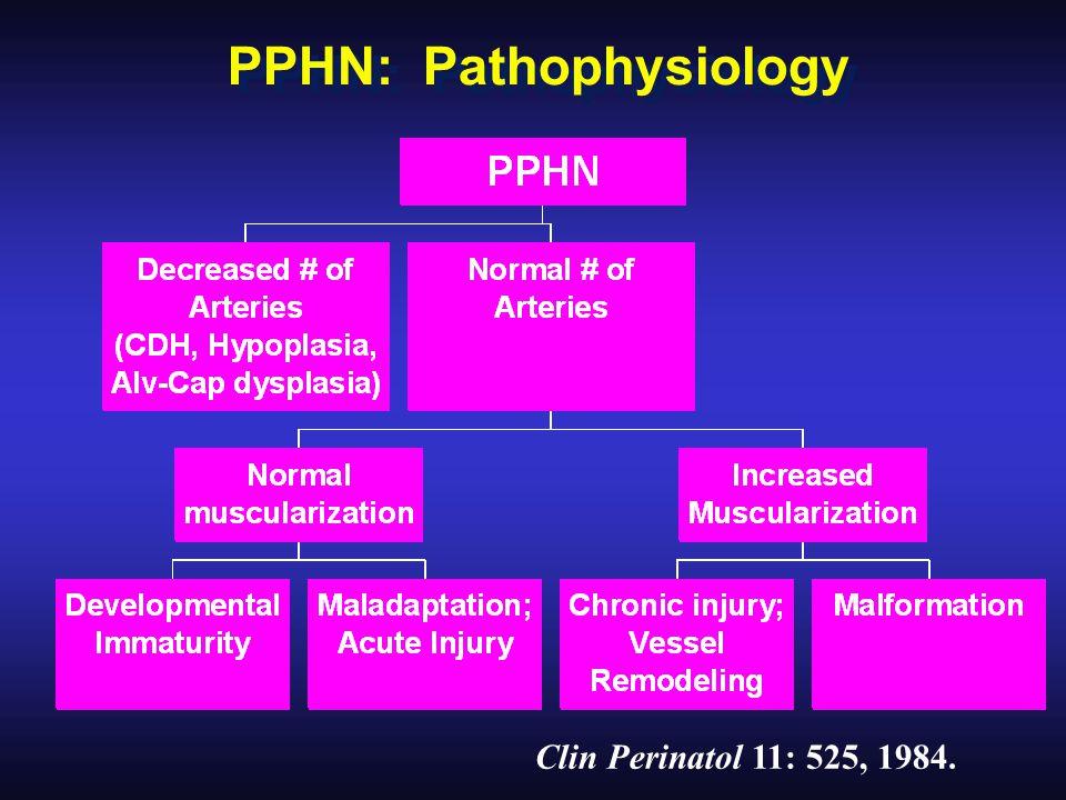 Clin Perinatol 11: 525, 1984. PPHN: Pathophysiology