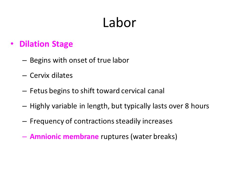 Labor Dilation Stage – Begins with onset of true labor – Cervix dilates – Fetus begins to shift toward cervical canal – Highly variable in length, but