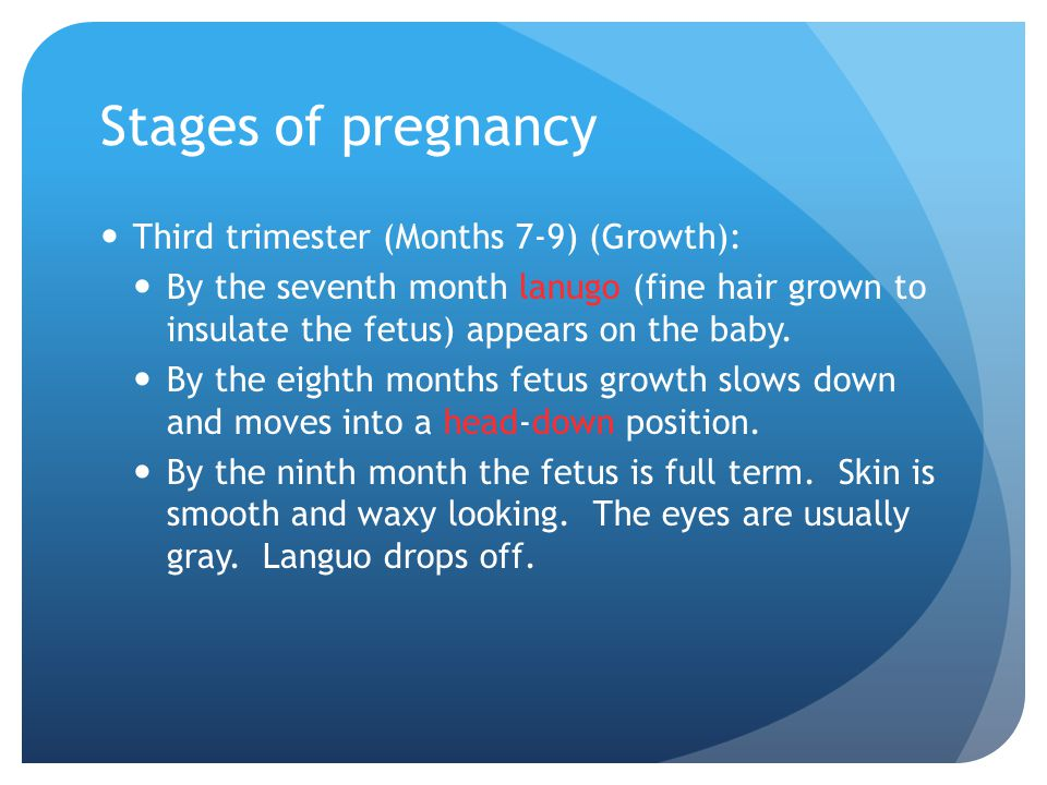 Stages of pregnancy Second trimester (Months 4-6) (Fetus Continues to form): By the end of the fourth month, fingernails, toenails, eyebrows, and eyel